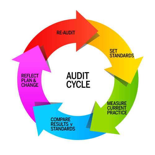 AUDIT-CYCLE