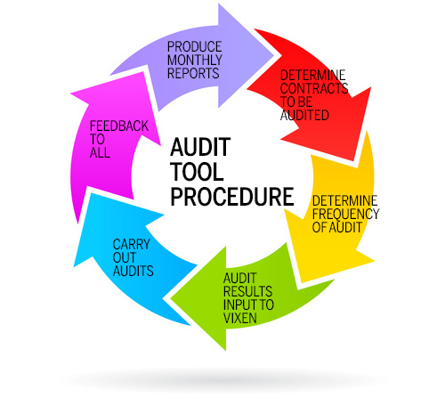 AUDIT-PROCEDURE